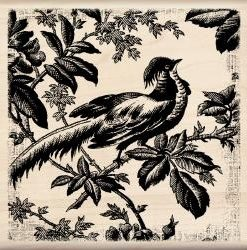 Mounted Rubber Stamp – Asian Pheasant