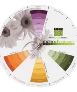 Bazzill Monochromatic Colour Wheel